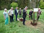 Baumpflanzaktion auf der Wildenburg
